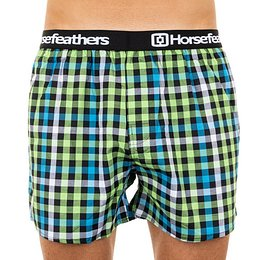 Men's shorts Horsefeathers Clay kiwi (AM068D)